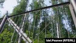 Арендатор уже обнёс лес железным забором