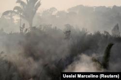 Vetëm gjatë tetë muajve të këtij viti, në Brazil janë regjistruar 73 mijë zjarre, shumica në rajonin e Amazonës.