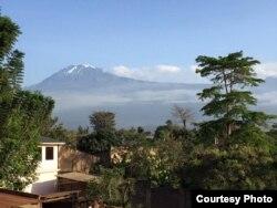 Від на вулькан Кіліманджара з горада Мошы ў Танзаніі