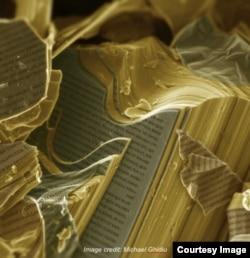 Гогоці переконаний, що надважливим завданням сьогодні є популяризація науки, тож він та його команда намагаються схрестити її з мистецтвом, демонструючи широкому загалу оброблені знімки наноструктур, які часто набувають дражливої для уяви форми (оригінали зображень, отримані за допомогою електронних мікроскопів, чорно-білі)