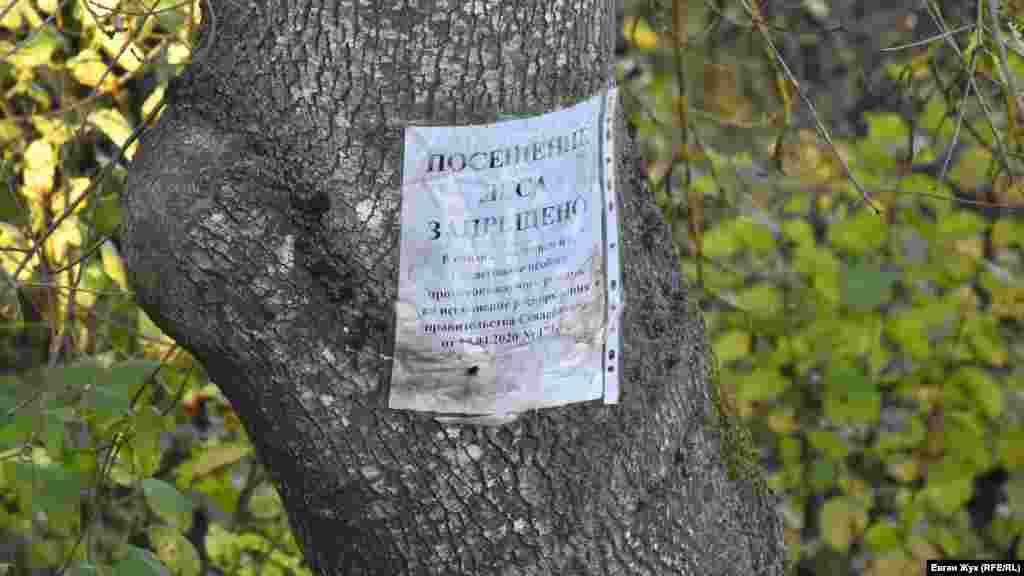 На одному з дерев з весни висить паперовий лист-попередження про заборону на відвідування лісів у зв'язку з особливим протипожежним режимом