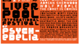 Фестиваль психоделической музыки, 2017. Фрагмент плаката