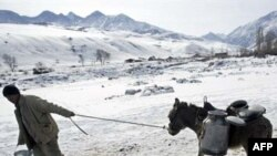 Leading a donkey to water outside the Kyrgyz capital, Bishkek