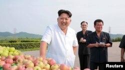 Ким Чон Ын, президент Северной Кореи, стоит около ящиков с фруктами.