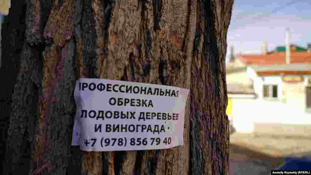 Актуальное для «февральских окон» объявление в старом городе