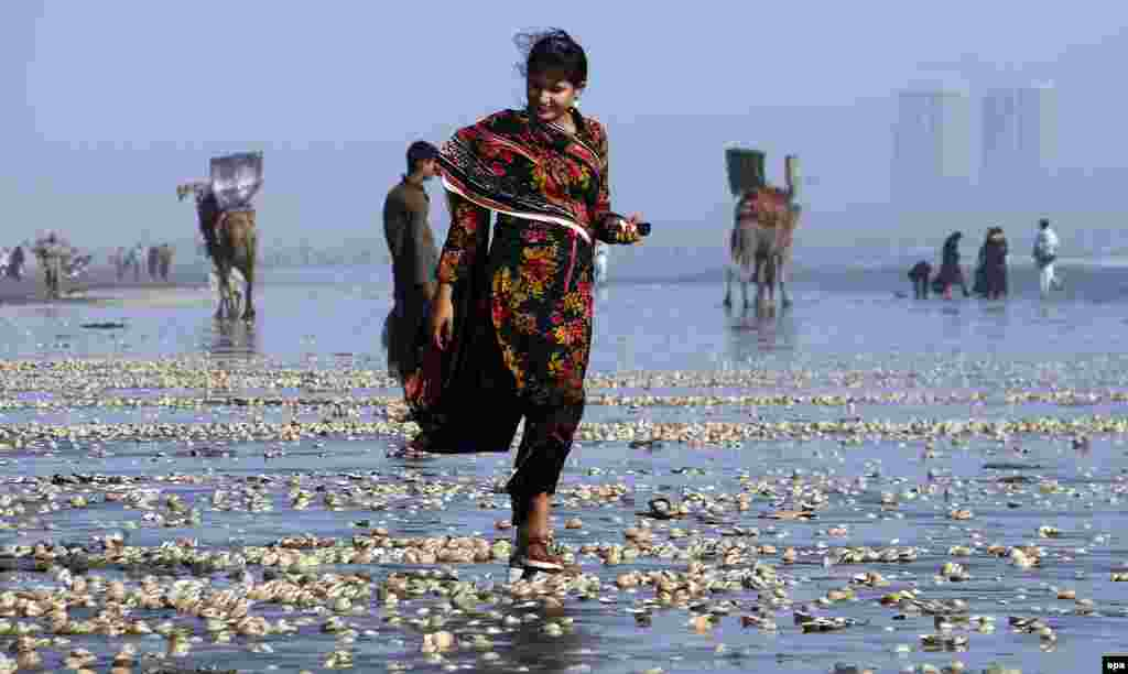 A Pakistani girl collects seashells on the beach in the port city of Karachi, Pakistan. (epa/Shahzaib Akber)