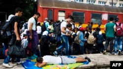 Migranti u Srbiji
