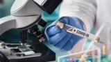 Львівські біологи працюють над розробкою української вакцини від COVID-19