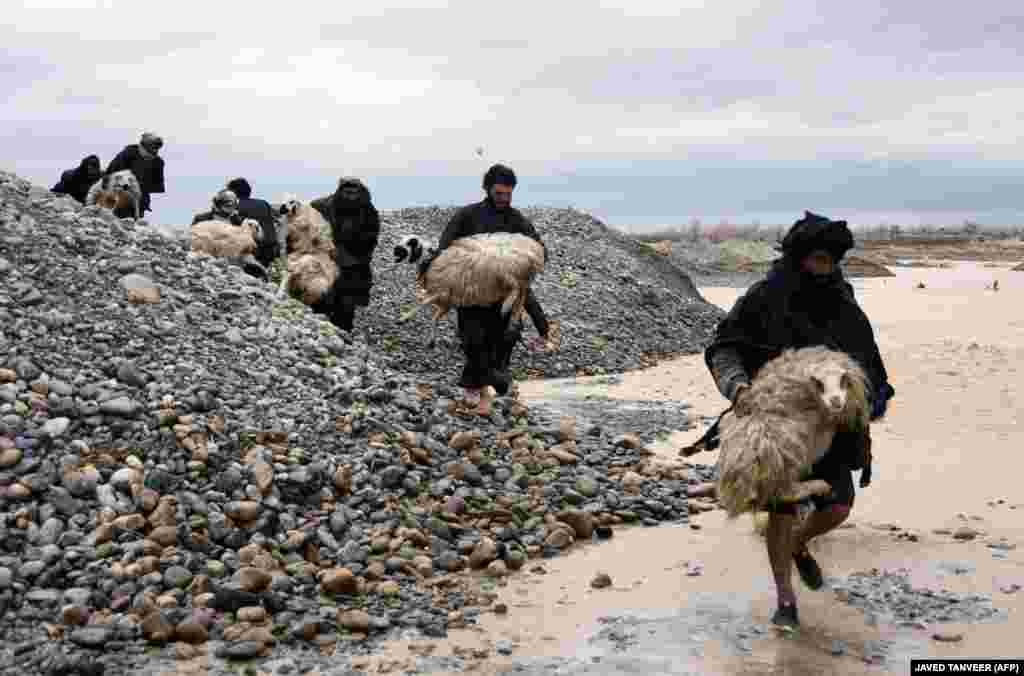 Afghan villagers carry sheep along a flood-affected area in Kandahar Province on March 2. At least 20 people were killed by flash floods, the UN said, as heavy rains swept away homes and vehicles, damaging thousands of houses. (AFP/Javed Tanveer)