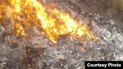 Специалисты самаркандской СЭС сожгли скелеты и туши обнаруженных у водоема ослов.