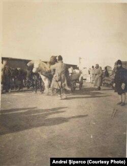 Încărcarea alimentelor în gara Iași pentru prizonierii de la Bârnova, 1918. Sursa: Andrei Șiperco (ed.), Tragedii și suferințe neștiute...., 2003 (AFB, E 2020 Schachtel nr. 111)
