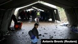 Migranti u blizini sela Berkasovo na putu ka hrvatskoj granici