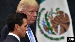 Енріке Пенья Нієто (л) і Дональд Трамп (п), тоді ще кандидат на виборах президента США, під час його візиту до Мексики 31 серпня 2016 року