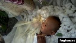 Дети часто засыпают после утомительной работы на полях. На фото мальчик спит пока родители собирают хлопок.
