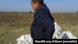 President Shavkat Mirziyoev has promised to end the practice of forcing students, teachers, medical personnel, and others into the cotton fields during harvest time.