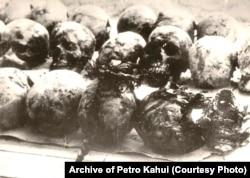 Черепи жертв сталінських репресій із масового поховання в урочищі Дем'янів Лаз біля Івано-Франківська