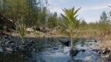 Russia - oil spill in Komi republic - environment - screen grab