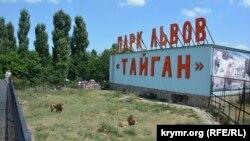 «Taygan» safari-park arslanlarınıñ qafesi, Qırım