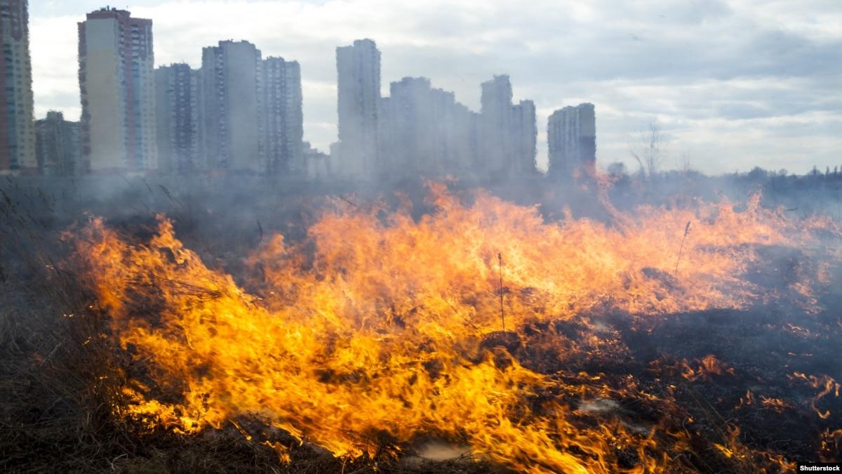МВД объяснило, почему нельзя сжигать сухую траву