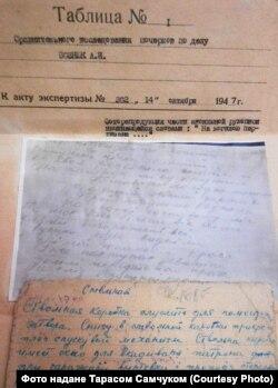 Фрагмент експертного висновку у справі Анатолія Вознюка