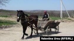 Un om cu o căruță la Călimănești