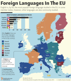 infographic - Foreign languages
