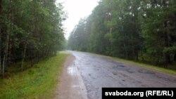 дарога пасярод радыяцыйнага лесу