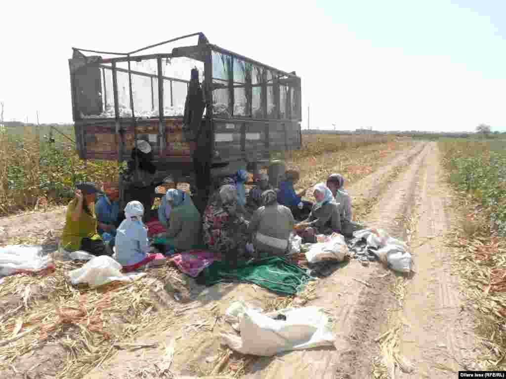 Мигранты из Узбекистана во время обеденного перерыва.
