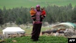 УВКБ ООН предложило предоставить репатриантам из Сирии статус беженцев, но они категорически отказались, заявив, что вернулись домой