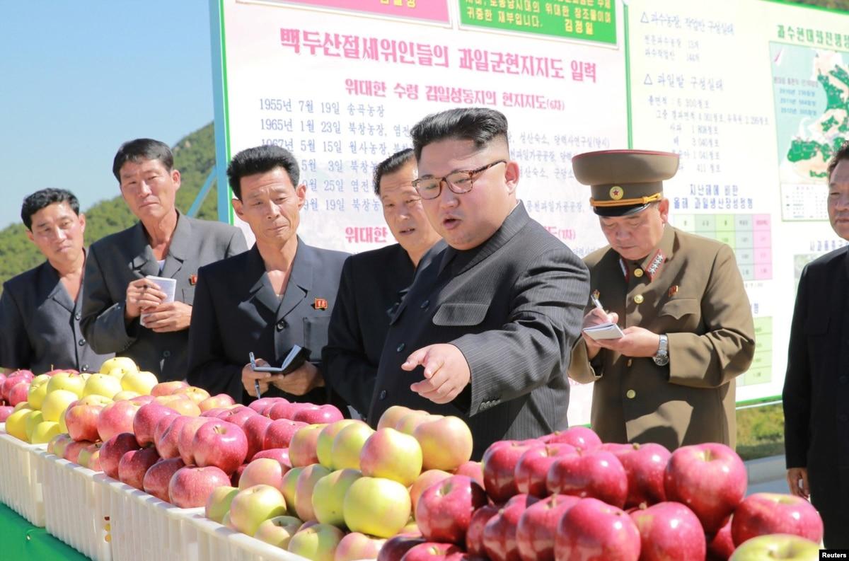 weekly vide north korea - HD1405×929
