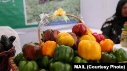 نمایشگاه محصولات زراعتی در کابل