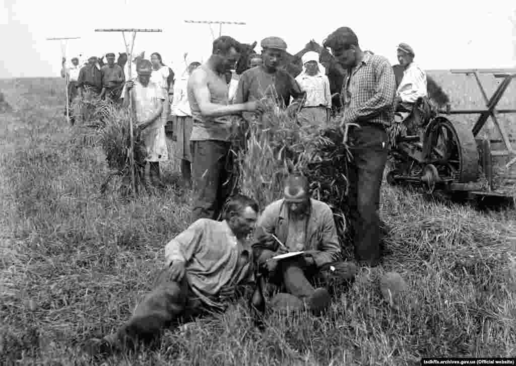 Пробний обмолот зернових в колгоспі імені Д. Бєдного в селі Удачне Донецької області, 1933 рік