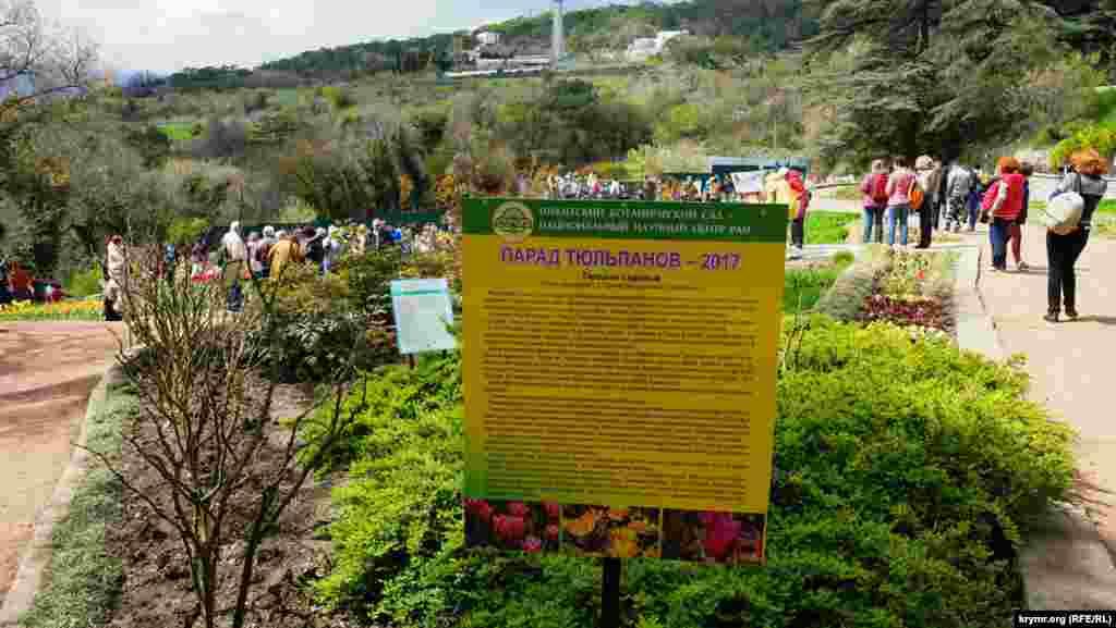 Көрмедегі қызғалдақтың 189 түрінің 170-і - шетелдік селекционерлер өнімі, 19 түрі мен будандастырылған сорттары Никита ботаникалық бағы қызметкерлерінің шығарғаны.