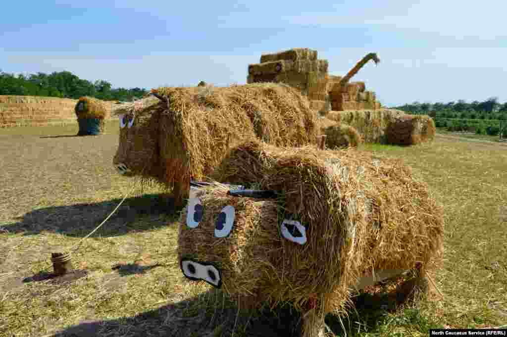 Трогательные коровы из сена разгуливают по музею под открытым небом