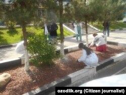Медперсонал поликлиники №8 в городе Ташкенте выполняют уборку прилегающей территории.