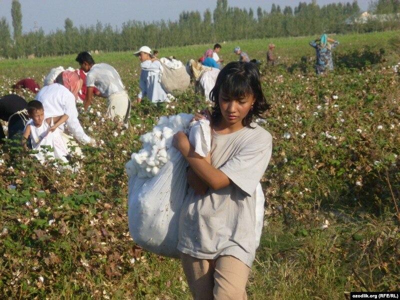 EU Lawmakers Block Textile Deal With Uzbekistan Over Child ...