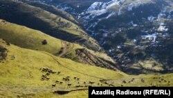 Azərbaycan, Lerik rayonu Ərdəbil kəndi
