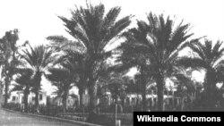 إحدى حدائق بغداد القديمة
