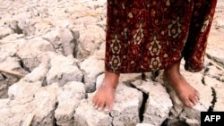 An Iraqi girl stands on cracked earth in the marsh area near Basra