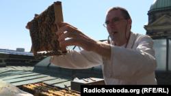 Бджоляр Уве Март на даху Берлінського собору