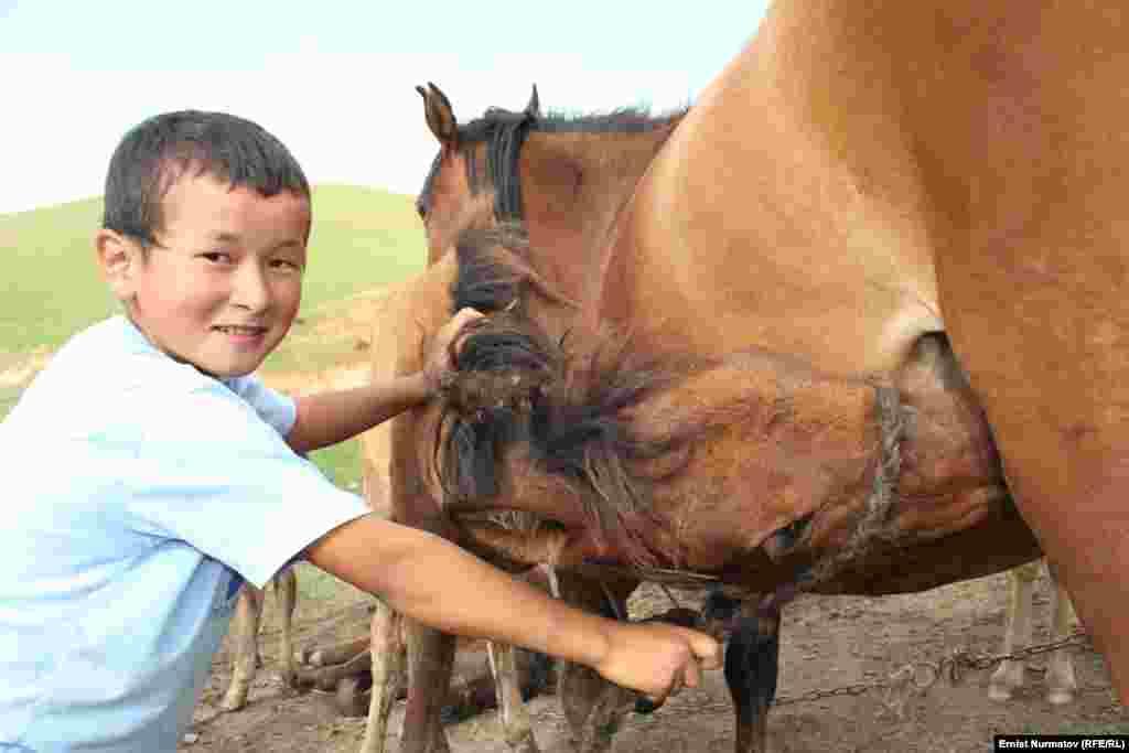 Дети в горах с детства учатся к общению с лошадями