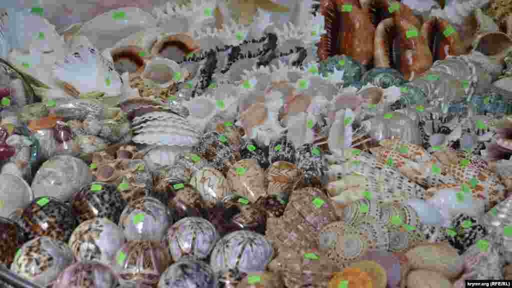 Ракушки, завезенные из Китая, покупают редко