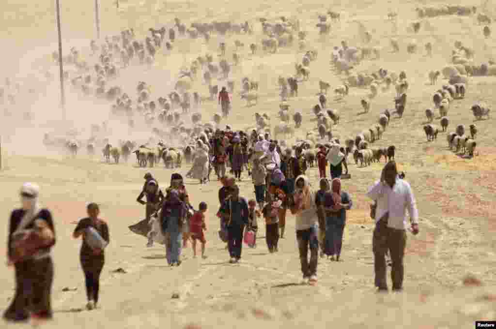 Displaced people from the minority Yazidi sect, fleeing violence from forces loyal to the Islamic State in Sinjar town, walk toward the Syrian border. (Reuters/Rodi Said)