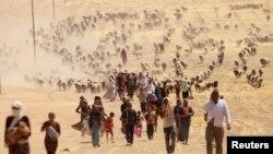 Беженцы-езиды заблокированы исламистами у горы Синджар