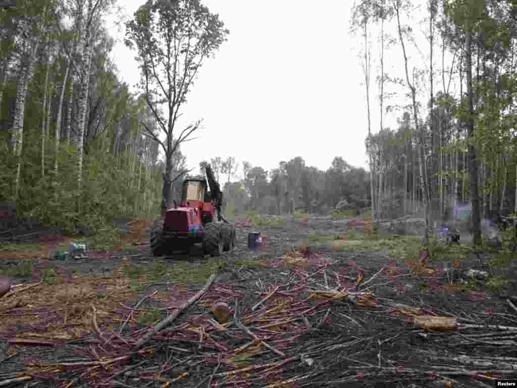 An idle tractor sits amidst felled trees on the site of the planned highway on August 27. Russian President Dmitry Medvedev had ordered a halt to construction.