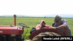Mnogi poljoprivrednici su stigli i na sud.