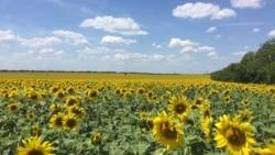 R. Moldova - o bijuterie încă nedescoperită de turiștii străini