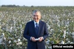 Президент Шавкат Мирзиёев Қўштепа туманида пахтани томчилатиб суғориш технологияси билан танишди