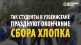 """Узбекские студенты пляшут: """"каторга"""" на хлопковых полях закончилась"""