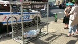 """На улицах в Нью-Йорке появились клетки, в которых лежат """"дети"""""""